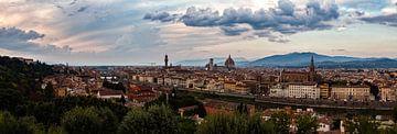 Panorama van het uitzicht in Florence van Roy Poots