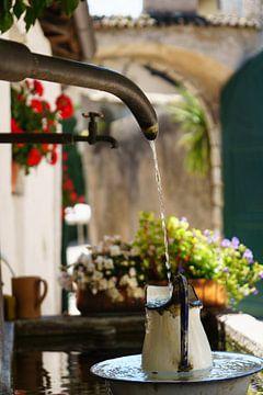 Wasserspeier Sommerfrische von Berthold Ambros