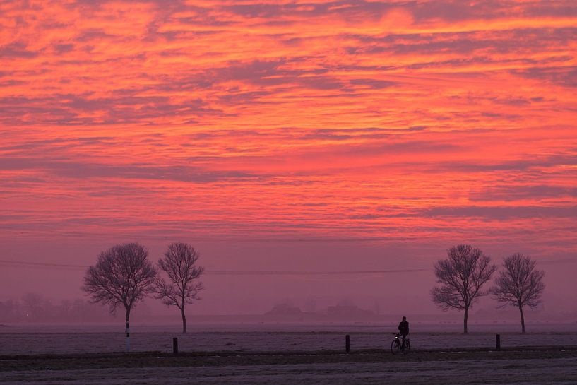 Eenzame fietser van Menno Schaefer