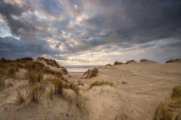 Stormwolken boven de duinen van Zeeland! van Peter Haastrecht, van