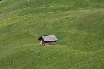 Dat schuurtje staat als een huis. von Jan Mulder