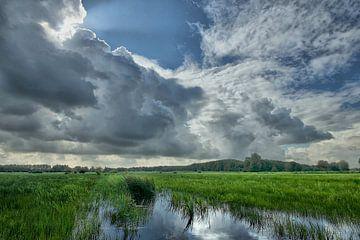 Wolken über Haagse Beemdenbos 2 von Cees van Gastel