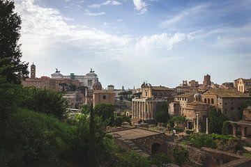 Het uitzicht over het Forum Romanum in Rome, Italië. van Joeri Mostmans