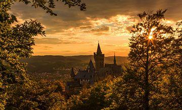 Wernigerode und Schloss im Sonnenuntergang von Frank Herrmann