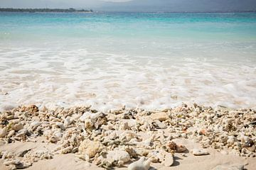 Wellen spülen über die Korallen am Strand von Esther Mennen