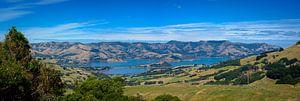 Panorama van de baai van Akaroa, Nieuw Zeeland van
