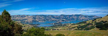 Panorama van de baai van Akaroa, Nieuw Zeeland van Rietje Bulthuis