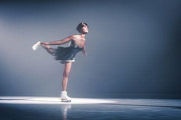 Dansen op het ijs van Arjen Roos