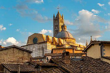 Kathedrale von Siena im Abendlicht von Easycopters