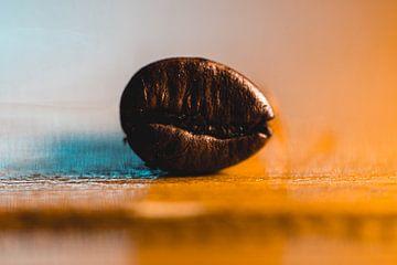 verse koffieboon van Nathan Okkerse