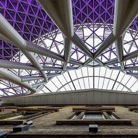 Purple Rain von Stefan Vlieger