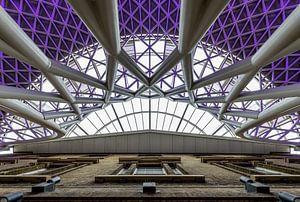 Purple Rain van Stefan Vlieger