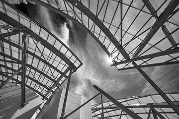 Dakstructuur van de Fondation Louis Vuitton van Michael Echteld