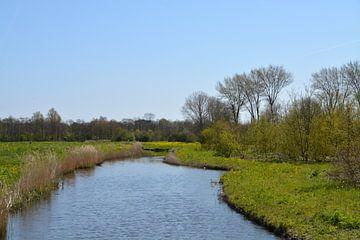 Landschaft im Aalkeetbuitenpolder (Vlaardingen) von FotoGraaG Hanneke