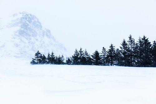 Sneeuwlandschap op Lofoten van