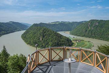 Uitzicht op de Schlögener Schlinge in Oostenrijk van Animaflora PicsStock