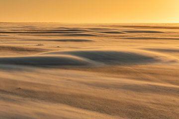 Sahara am Wattenmeer - Natürliches Ameland von Anja Brouwer Fotografie