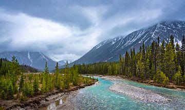Landschap in Kootenay Nationaal Park, Canada van Rietje Bulthuis