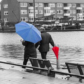 Kleurrijk in de regen van Rolf Pötsch