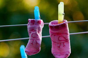 Baby socks van