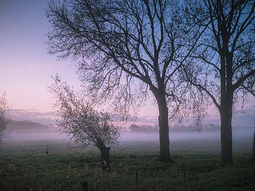 Mistige ochtend II van Diane van Veen