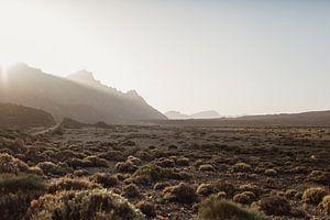 Sunset El Teide