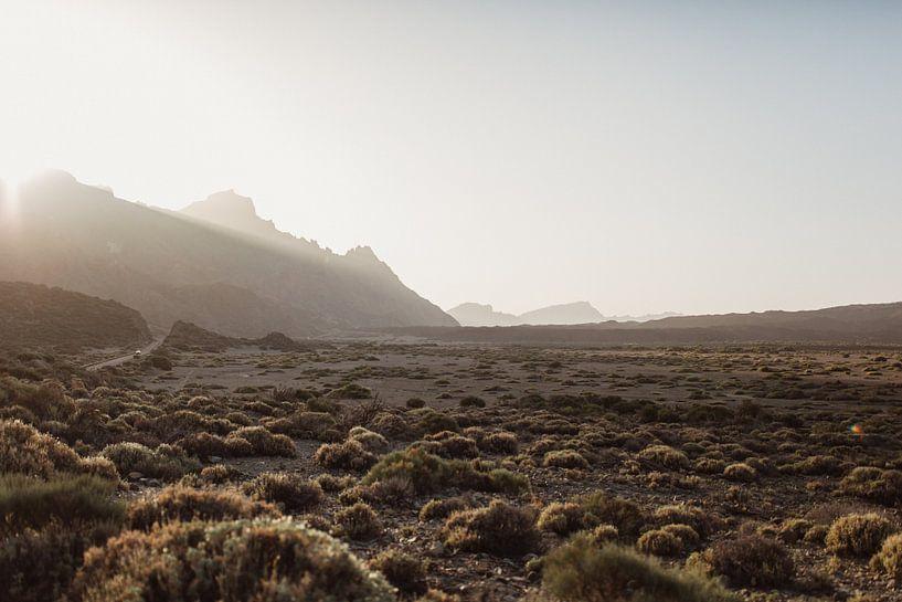 Sunset El Teide van Leathitia Zegwaard