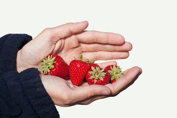 Een handvol mooie rijpe aardbeien van Henk van den Brink