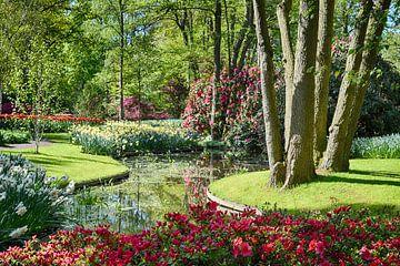 Une promenade dans le parc sur Hanneke Duifhuize