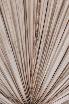 Palmenblatt-Textur von Roos Oosterbroek | hand painted prints en fotografie