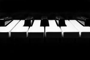 Klaviertastatur in minimalem Schwarz und Weiß Nahaufnahme Detail