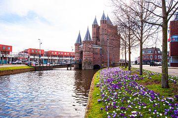 Amsterdamse Poort in Haarlem. von Brian Morgan