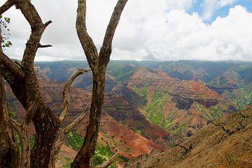 Waimea Canyon, Kauai, Hawaii van Janina Ballali