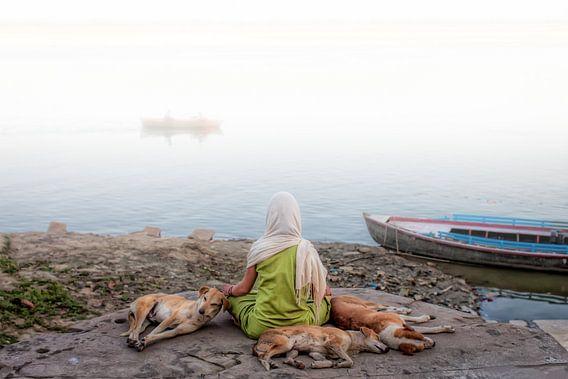 Diese Frau meditierte an den Ufern des Ganges in Varanasi in Indien, wenn einige streunender Hunde z