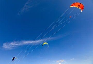 Kites in de lucht van Percy's fotografie