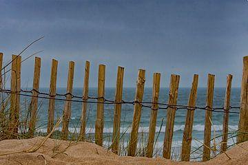 Duinen en strand van Surtainville