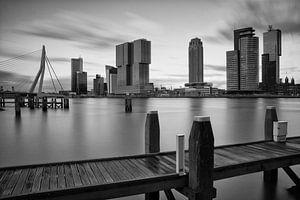rotterdam skyline in zwart wit