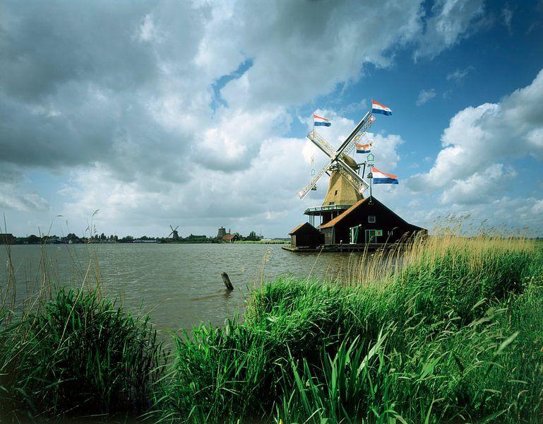 Molen De Zoeker, Zaandam van Rene van der Meer