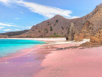 Indonesië - Komodo National Park - Pink Beach van Rik Pijnenburg