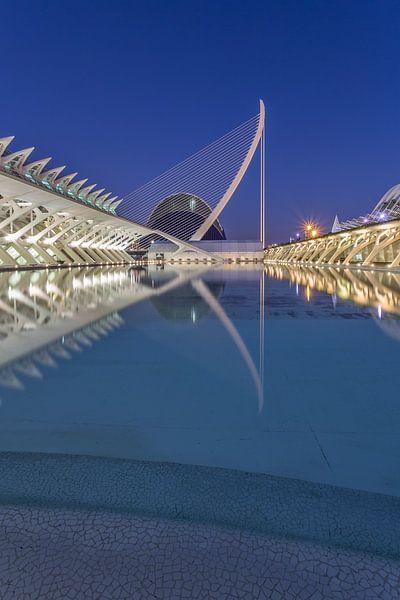 City of Arts and Sciences, Valencia - 1 van Tux Photography