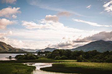 Ein Reh kommt, um einen Blick auf Irlands schöne Landschaft zu werfen von elma maaskant