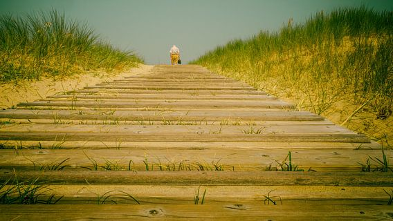 To the beach (analog colour)