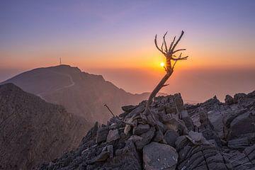 Sonnenuntergang in Jebel Jais