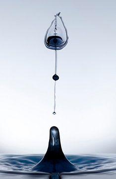 Zwarte druppel in een tulp vorm2 van Focco van Eek