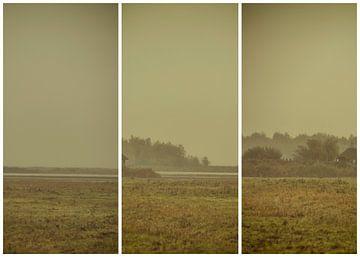 lauwersmeer triptychon 23 von anne droogsma
