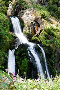 Wasserfall in Triberg (Deutschland) von Karin van Waesberghe