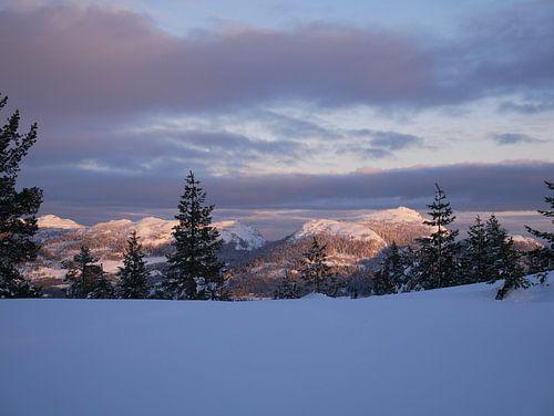 Noorse bergen in het avondlicht