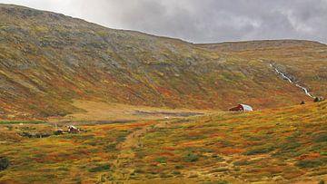 Island 14 von Henk Langerak