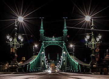 Liberty Bridge Budapest van Mario Calma
