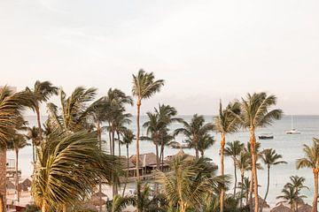 Wuivende Palmen Op Aruba van Henrike Schenk